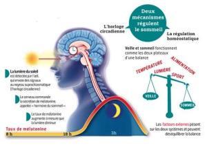 luminotherapie schema