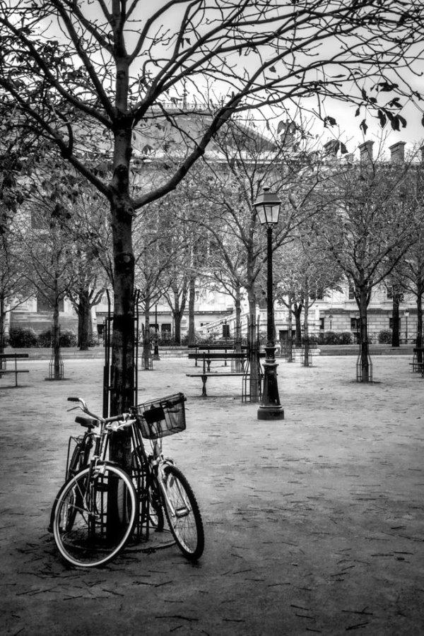 Photo Paris Place Dauphine Noir et Blanc