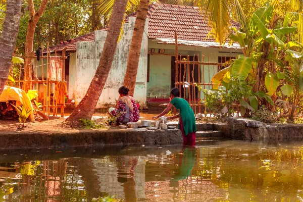 Inde Kerala Backwaters Alleppey