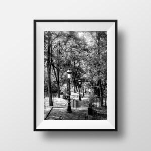 Escaliers à Montmartre Vieux Paris Noir et Blanc