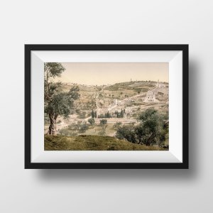 Photo Ancienne Jerusalem Le Mont des Oliviers