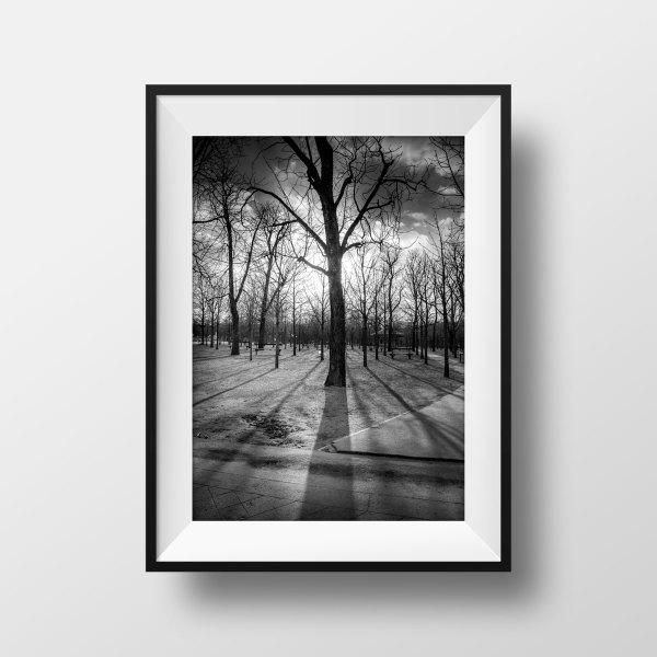 Photo de Paris Jardin du Luxembourg