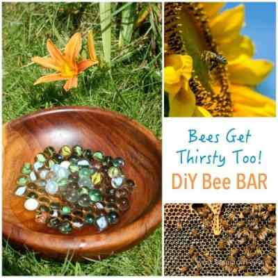 Bee Bar - Because Bees Get thirsty too!