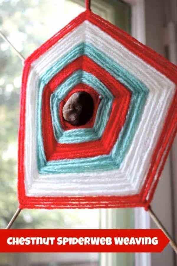 Chestnut Spider Web Weaving