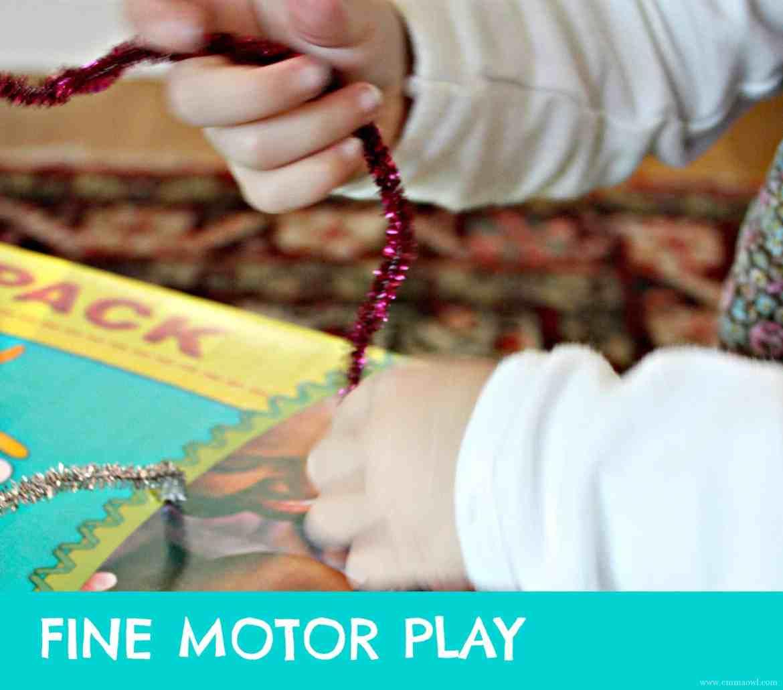 Fine Motor Play