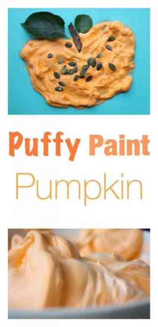 Fantastic Fall - Autumn Craft for Kids. Puffy Paint Pumpkin with real pumpkin seeds!