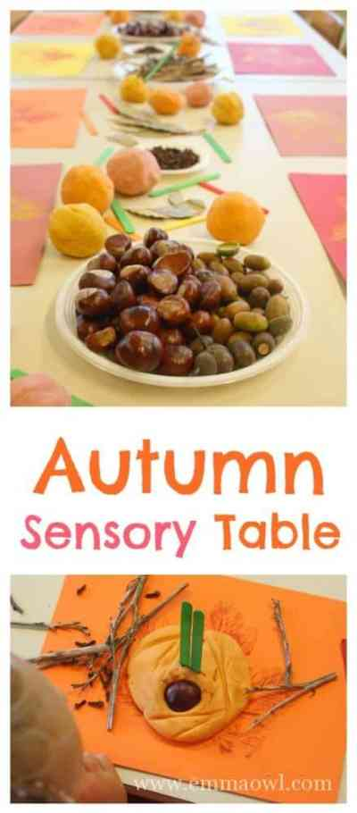 Autumn Time - this easy to set up sensory table makes a great little pre school or kindergarten project, includes 3 types of fall play dough and leaf printing.