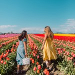6 Flower Field Photo Shoot Ideas To Try Emma S Edition