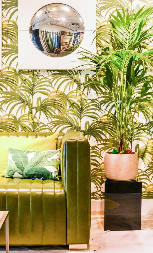 Interior design trend: botany/greenery - art deco green leather couch, palm leaf wallpaper and potted palm at Whistler Leather's showroom