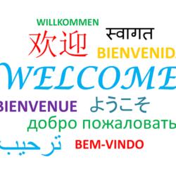 Brush up On Your Language Skills