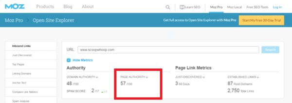 good Domain Authority Score
