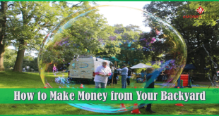 How to Make Money from Your Backyard