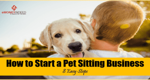 How to Start a Pet Sitting Business