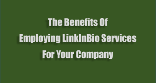 Benefits-Of-Employing-LinkInBio-Services-For-Your-Company