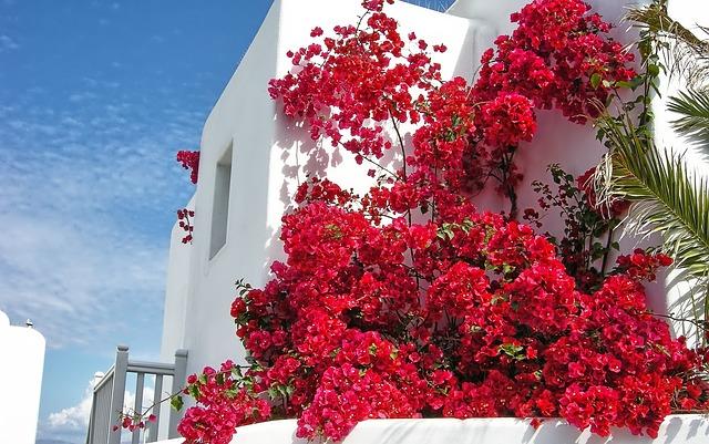 Isole greche Mykonos