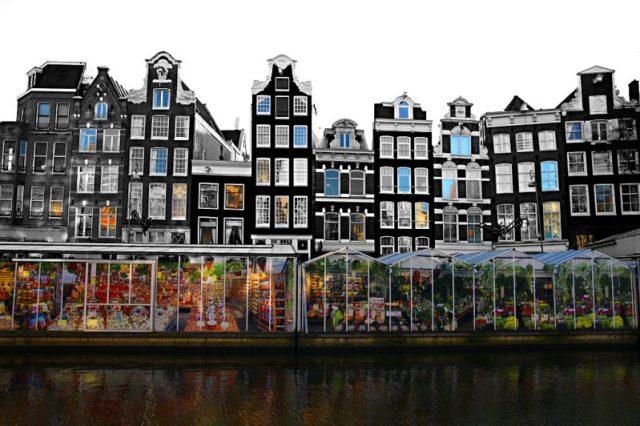 Cosa fare ad Amsterdam