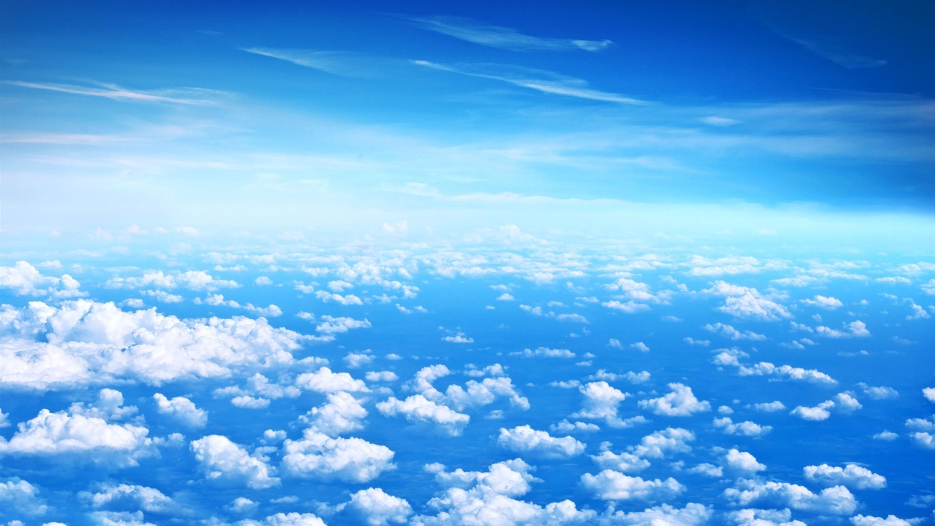 Resultado de imagem para alegria flores e ceu azul