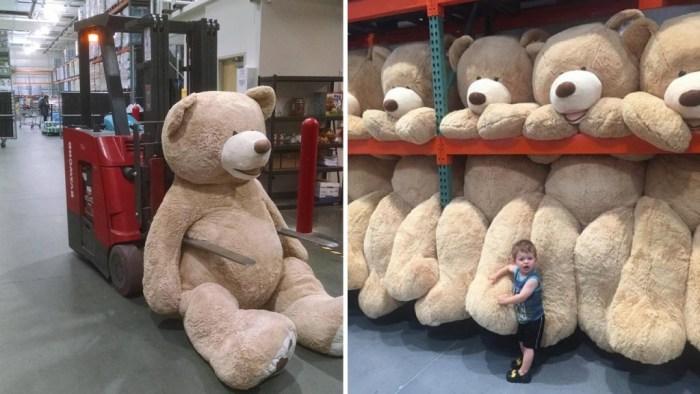Ursos-de-Pelúcia-Gigantes10