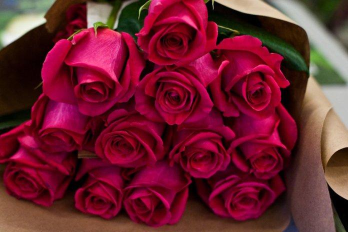 15tb-flowers01-master768