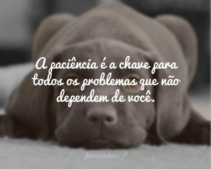 a-paciencia-e-a-chave-para-todos-os-problemas