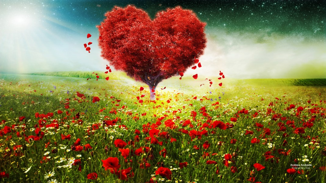 valentines_day_love_heart_tree_landscape_hd-HD