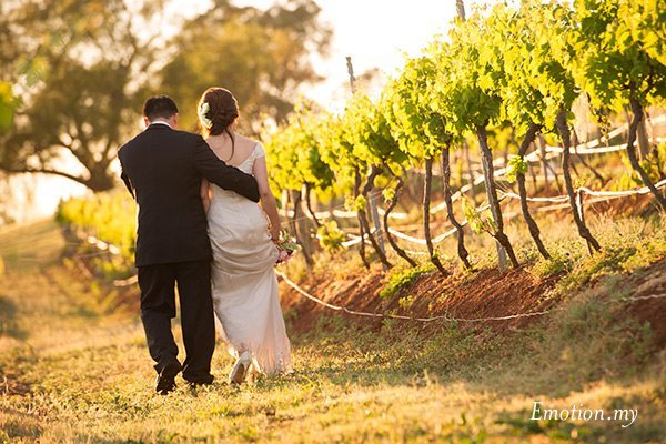 portraits-hunter-valley-australia-vineyard