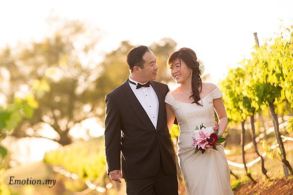 prewedding-portraits-hunter-valley-australia-vineyard-asian-couple