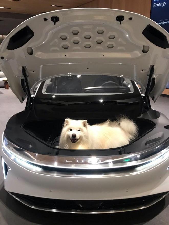 """Nová elektromobilní psí boudička? Ne, to jen Lucid Air demonstruje parametry svého """"frunku"""" vpřídi (foto Lucid)"""