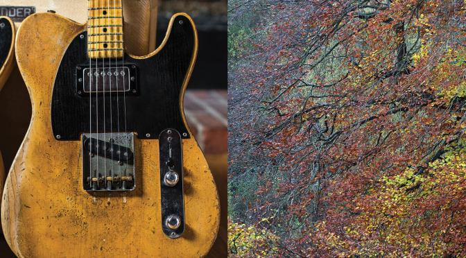 Is Fender phasing out swamp ash just the tip of the iceberg?