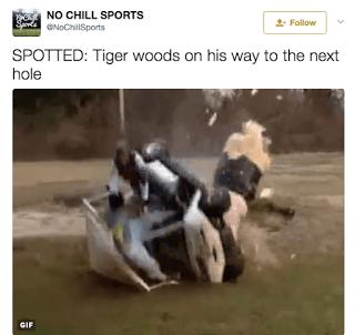 Tiger Wood Memes DUI