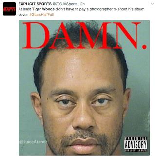 Tiger Woods Memes DUI