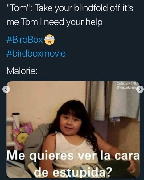 Bird Box Memes