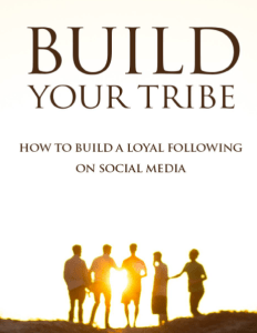 EZ Traffic PLR Rights : How to Guide - Build Your Tribe - BONUS 3