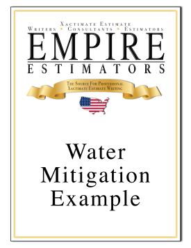 Water Mitigation Invoice