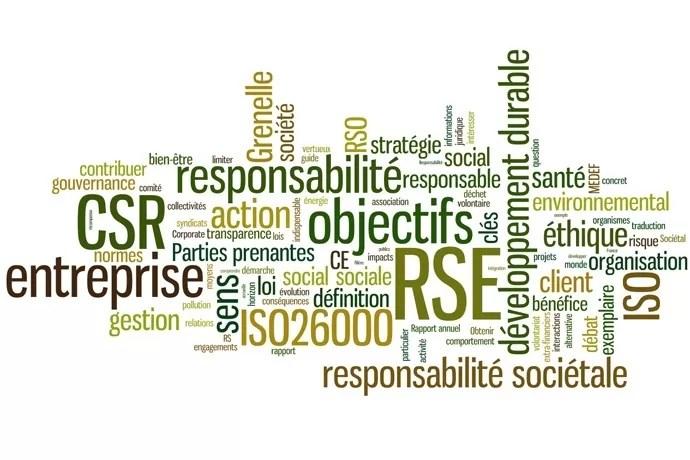 Responsabilite societale entreprises
