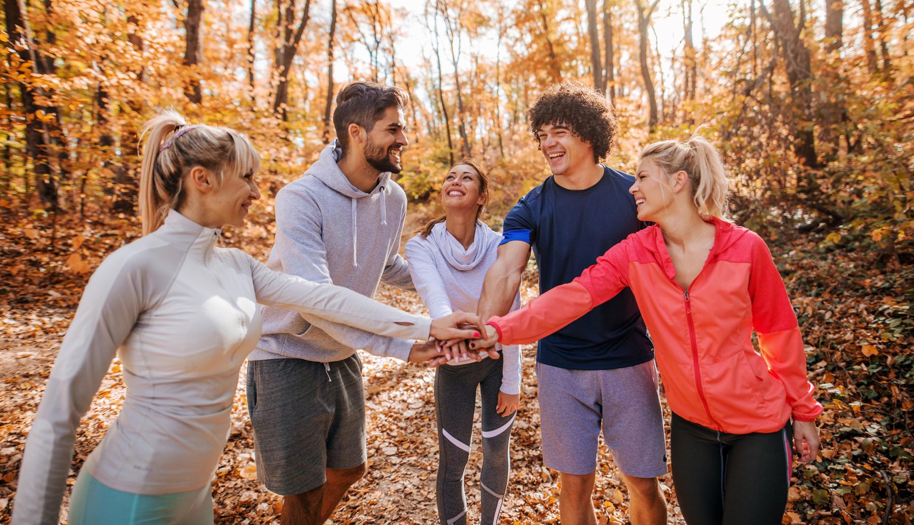 activités engagement automne