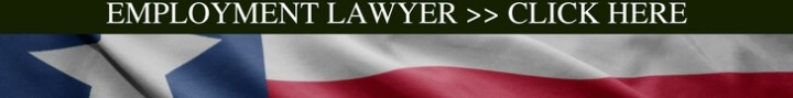 best houston employment lawyer