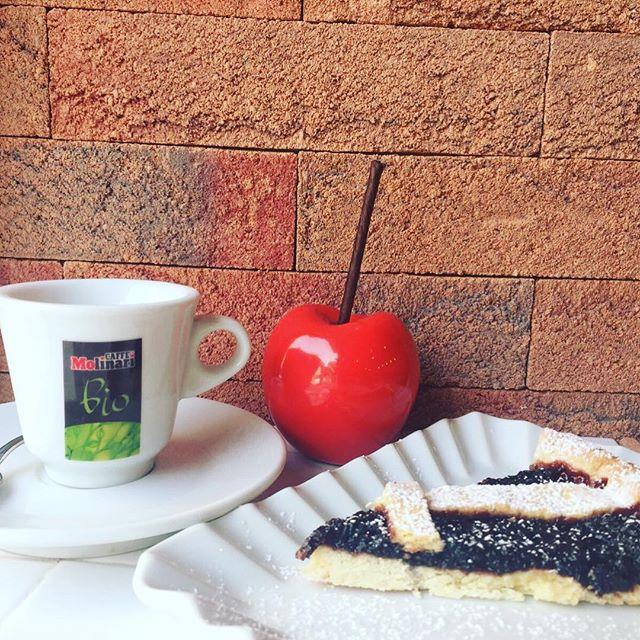 Caffè time️️Crostata handmade con marmellata di more appena fatta️#buongiorno  #emporiobrand #cake #cakestagram #sweet #handmade #happysunday #legirls #km0 #mangiaregenuino️ #colazionesana