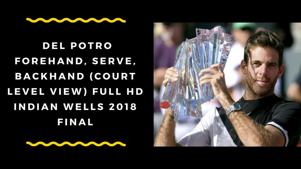Indian Wells 2018 FINAL - DEL POTRO FOREHAND, SERVE, BACKHAND (Court Level View) FULL HD