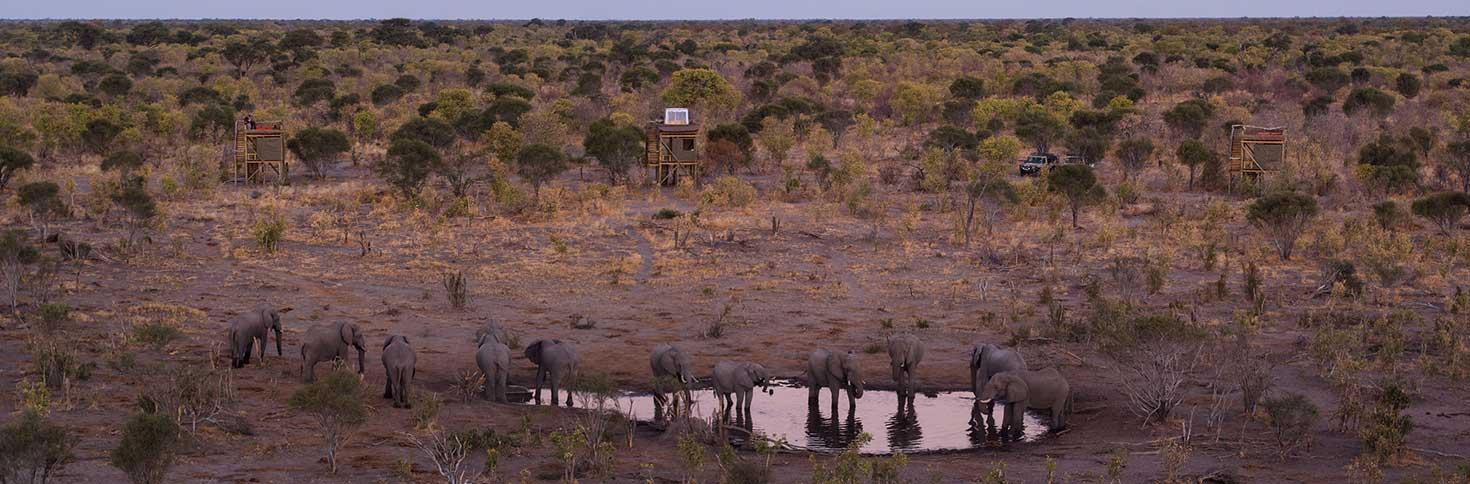 Skybeds Camp_Suite Okavango Delta