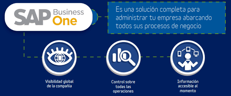 SAP Business-One