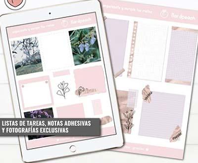 Bullet Journal Digitales