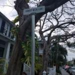 Key West, Day 3 (Part III)