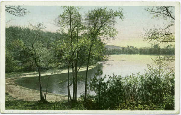Thoreau's cove at Walden Pond