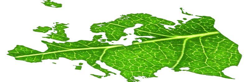Yeşil Lojistik