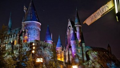 Photo of Theme Parks in Orlando – The News Engine USA