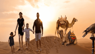 Photo of Major Attractions List of UAE (2020) & Things to do in Dubai
