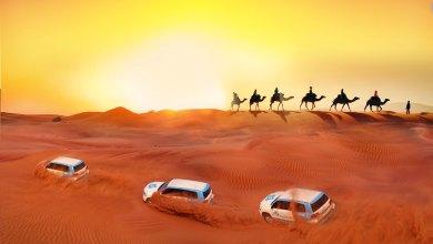 Photo of Camel Trekking in Dubai