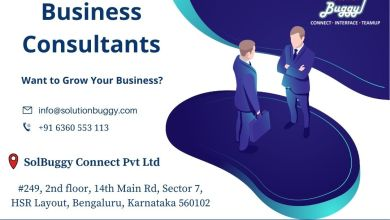 Photo of How Do Business Consultants Work?