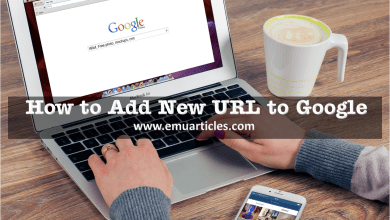 Photo of How to Add new URL to Google